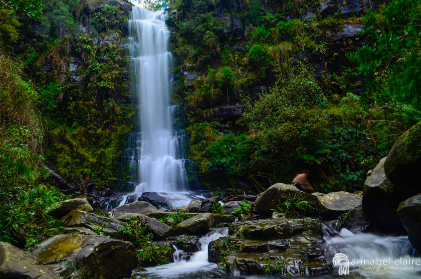 Image of Erskine Falls during a chasing waterfalls trip to Lorne in Victoria Australia